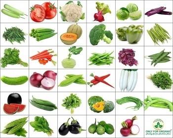 Combo of 15 winter vegetable seeds