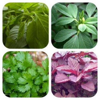 Leafy Vegetable Combo