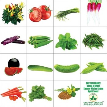 Combo of 15 summer vegetable seeds